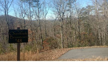 Brasstown,North Carolina Mountain land for sale LT 48 OVERLOOK BRASSTOWN, Brasstown, North Carolina 28902,Vacant lot,For sale,OVERLOOK BRASSTOWN,253734, land for sale Advantage Chatuge Realty