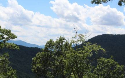 Hayesville,North Carolina Mountain land for sale 143 SHILOH RIDGE, Hayesville, North Carolina 28904,Vacant lot,For sale,SHILOH RIDGE,289283, land for sale Advantage Chatuge Realty