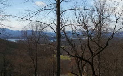 Hayesville,North Carolina Mountain land for sale 37 HIGH MEADOWS, Hayesville, North Carolina 28904,Vacant lot,For sale,HIGH MEADOWS,236627, land for sale Advantage Chatuge Realty