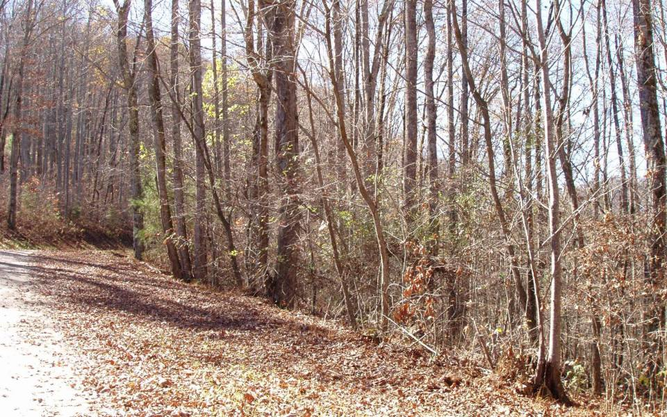 Hayesville,North Carolina Mountain land for sale LT 96 SHILOH STABLES, Hayesville, North Carolina 28904,Vacant lot,For sale,SHILOH STABLES,305773, land for sale Advantage Chatuge Realty