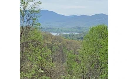 Hayesville,North Carolina Mountain land for sale LT 10 HIGH MEADOWS, Hayesville, North Carolina 28904,Vacant lot,For sale,HIGH MEADOWS,306027, land for sale Advantage Chatuge Realty