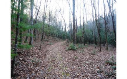 Hayesville,North Carolina Mountain land for sale LT 23 SHELTON SPRINGS, Hayesville, North Carolina 28904,Vacant lot,For sale,SHELTON SPRINGS,244713, land for sale Advantage Chatuge Realty