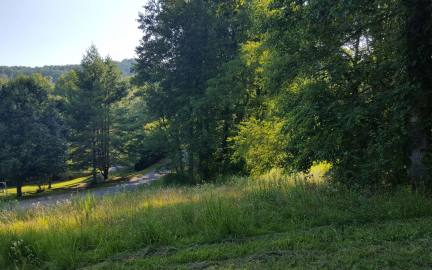 NC mountain property LOT 8 DOGWOOD LANE,Hayesville,North Carolina 28904,Vacant lotFor sale,Vacant lot,280221 mountain real estate